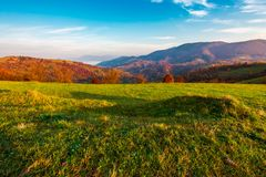 Grassy meadow on hill side at sunrise in autumn. Beautiful mountainous landscape with distant valley in fog Stock Image