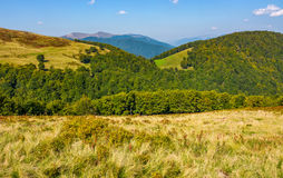 Grassy meadow on a hillside in autumn Stock Photography