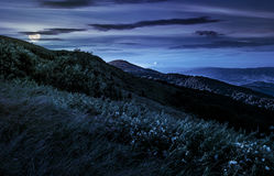 Grassy meadow on a hillside at midnight. Mountain landscape at night in full moon light Stock Images