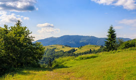 Grassy meadow on hillside. In mountains under cloudy sky stock photo