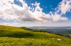Grassy meadow on mountain hills. Lovely summer scenery of Runa mountain, Ukraine Royalty Free Stock Photos