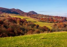 Grassy meadow in mountainous countryside. Beautiful landscape with forest on hillside in warm late autumn day Royalty Free Stock Photos