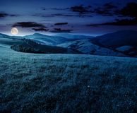 Grassy meadow in mountains at night. Beautiful summer countryside under the gorgeous sky Royalty Free Stock Images