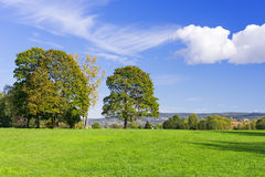 Grassy meadow with trees sky clouds Royalty Free Stock Photos