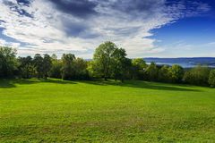 Grassy meadow with trees. Sky and clouds Stock Photo