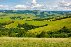 Grassy meadows and forested hill. Lovely countryside in autumn Royalty Free Stock Images