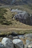 Grassy mountain side with stream Stock Photos