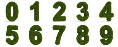 Grassy Numbers Stock Image