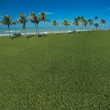 Grassy ocean view. Grassy view of the ocean Stock Photo
