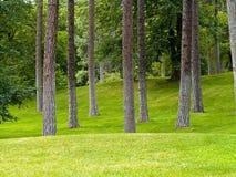 Grassy Park and Trees Stock Photos