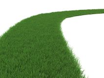 Grassy Path. Green Grassy Path Isolated on White vector illustration