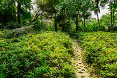 Grassy path before dwelling buildings in sunny summer Stock Photography