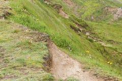 Grassy path at Flamborough Head Royalty Free Stock Images