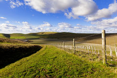 Grassy Path in Rolling British Countryside. A wide grassy track and a barbed wire fence set amongst rolling green hills on the Pewsey Downs in Wiltshire, UK Royalty Free Stock Photo