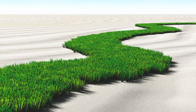 Grassy path on the sand Stock Photography