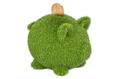 Grassy piggy bank with golden coin. Eco concept, 3D rendering Stock Photography