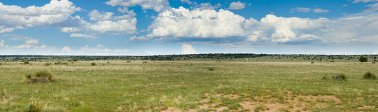 Grassy prairie of Texas - panorama Stock Photos