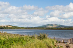 A grassy river bank in ireland overlooking green hills Royalty Free Stock Image
