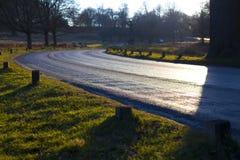 The grassy road Stock Photo