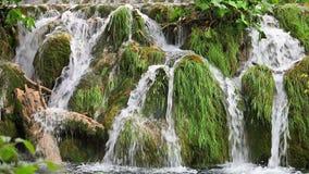 Grassy rocks waterfall stock video footage