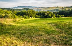 Grassy rural field in mountains. Haystack a the end of meadow near the forest. mountain ridge with high peak in the far distance. lovely countryside in Stock Photos