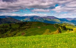 Grassy rural fields on a cloudy day. Lovely springtime countryside in Carpathian mountains Stock Image