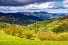 Grassy rural fields in mountainous area Stock Images