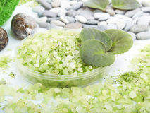 Grassy salt Royalty Free Stock Images