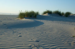 Grassy Sand Dune. Small sand dune with grass stock image