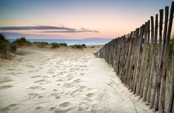 Grassy Sand Dunes Landscape At Sunrise Stock Image