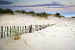 Grassy sand dunes landscape at sunrise Royalty Free Stock Photography