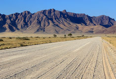 Grassy Savannah and mountains, Namib desert road Royalty Free Stock Photo