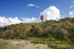 Grassy sea shore and lifebuoy. Royalty Free Stock Image