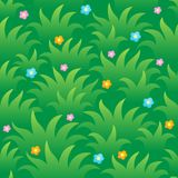 Grassy seamless background 1. Vector illustration Royalty Free Stock Images