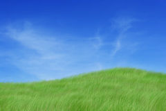 Grassy slope Royalty Free Stock Photography