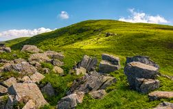 Grassy slope with boulders in summer. Beauty of the nature concept. location Polonina Runa in Carpathian mountains of Ukraine Royalty Free Stock Photo