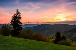 Grassy slope rural area at sunset. Beautiful mountainous landscape of Ukainian Carpathians in springtime Stock Photography
