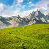 Grassy slopes and rocky peaks composite Stock Photos
