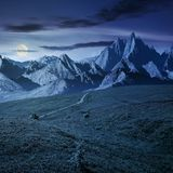 Grassy slopes and rocky peaks composite at night. Grassy slopes and rocky peaks composite. gorgeous summer landscape with magnificent mountain ridge over the Stock Image