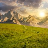 Grassy slopes and rocky peaks composite at sunset. Grassy slopes and rocky peaks composite. gorgeous summer landscape with magnificent mountain ridge over the Royalty Free Stock Photography