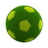 Grassy Soccerball Royalty Free Stock Photography