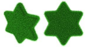 Grassy star object Royalty Free Stock Photo