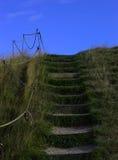 Grassy steps Stock Photography