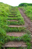 Grassy Steps Royalty Free Stock Photos