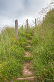 Grassy track leading up steps Royalty Free Stock Photography