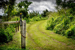 Grassy track way Entrance Royalty Free Stock Images