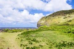 Grassy tropical beach in Hawaii Royalty Free Stock Photos