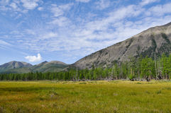 Grassy valley along the mountain ridge. Royalty Free Stock Images