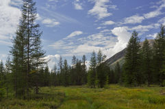 Grassy valley along the mountain ridge. Stock Photo