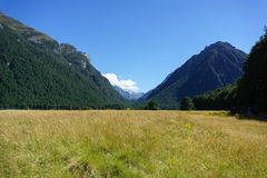 Grassy valley of Rees Track along Dart River. looking up valley between bush clad Southern Alps Royalty Free Stock Photos
